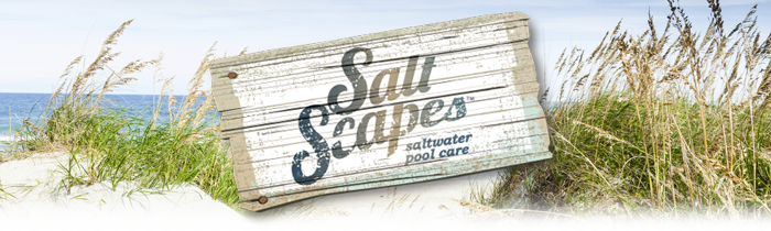 saltscapes_header